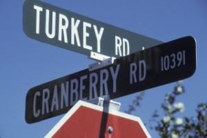 turkeyroad122494763