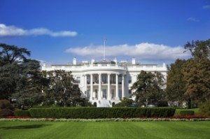 white house 162335365