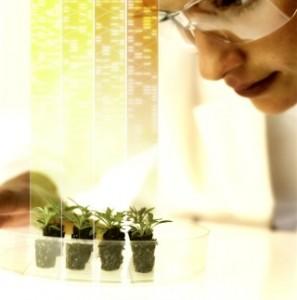 studying plants AA049499